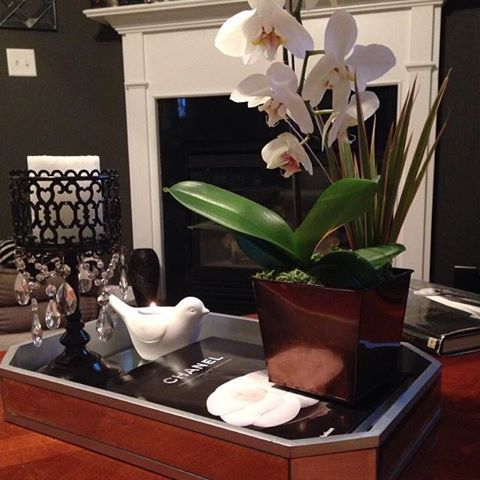 Decided to change my coffee table style just a little.  Chanel Coffee Table Book: Purchased from a consignment store. White Dove: Target. Candleholder: TJ Maxx. The orchid was a boss' day gift  At the end of the table, I also have a Versace Coffee Table book that was purchased from an antique store.  xoxo