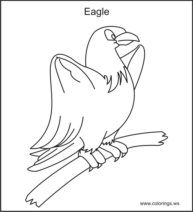 11 best Free Printable Birds Coloring Pages images on Pinterest - new eagles to coloring pages