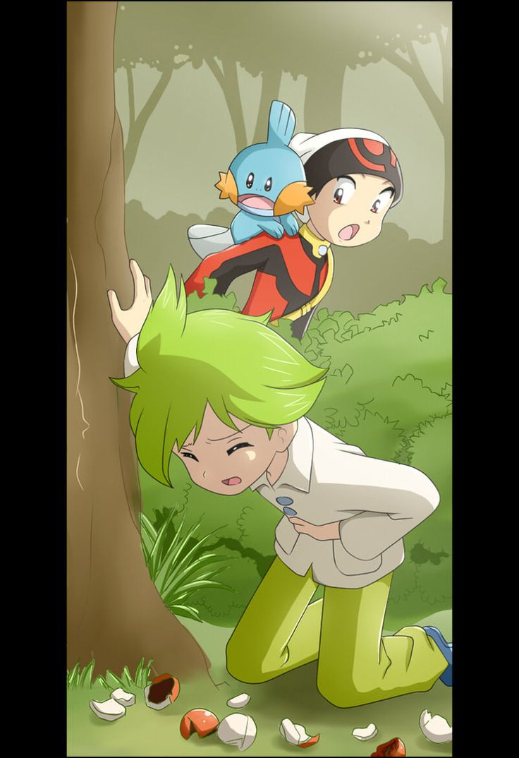 Ruby and WALLY. Poor kid. This looks like its from the manga, I don't remember if it is or isn't, I just know it looks a lot like the Pokemon Adventures manga.