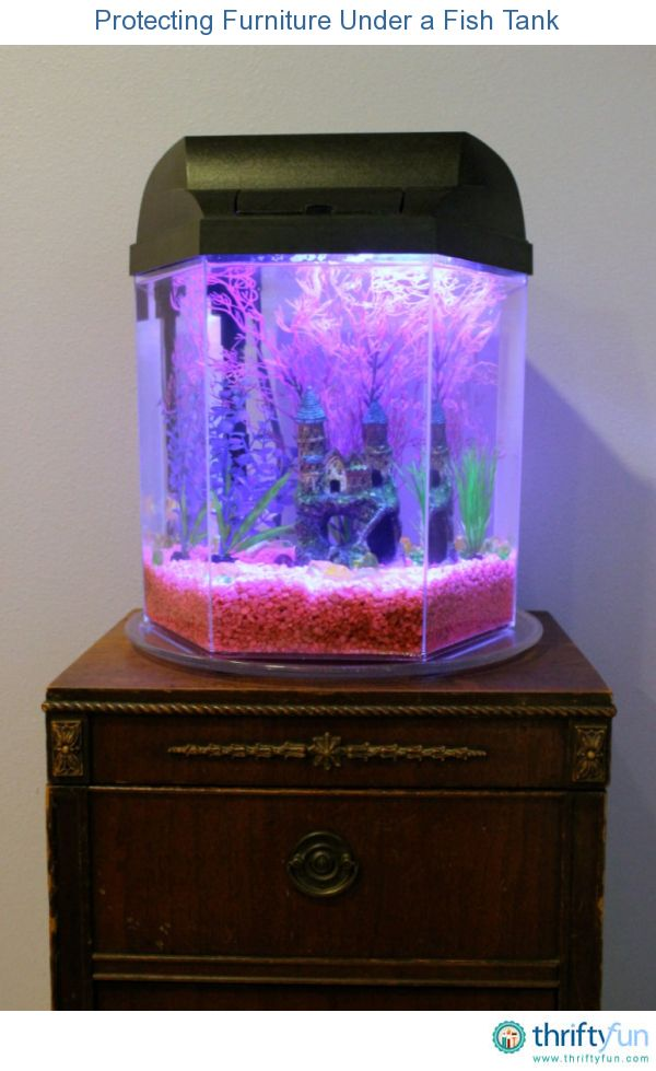 Charming Protecting Furniture Under A Fish Tank | Small Fish Tanks, Wooden Furniture  And Fish Tanks