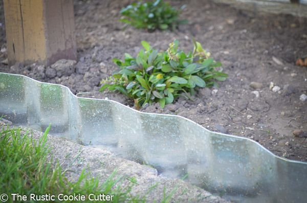 Update on the galvanized garden edging!  Look how amazing it looks with the dark foliage behind it! I LOVE how it turned out!  https://www.rusticcookiecutter.com/galvanized-garden-edging/?utm_campaign=coschedule&utm_source=pinterest&utm_medium=The%20Rustic%20Cookie%20Cutter&utm_content=How%20to%20Make%20Galvanized%20Edging%20for%20a%20Rustic%20Garden