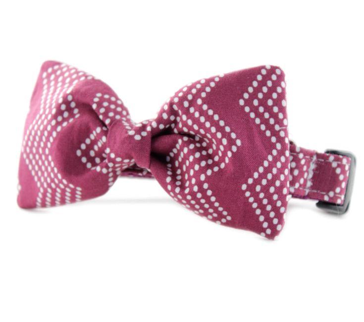 Chevron Bow Tie Dog Collar - Raspberry Splash Chevron Bow Tie Dog Collar - Purple Chevron Tiny Dot Bowtie Dog Collar- bowtie dog collar