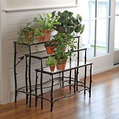 Nesting Branch Plant Stands, Set of 3 Will put this in dining room. Put all plants in same color pots for a cohesive look.