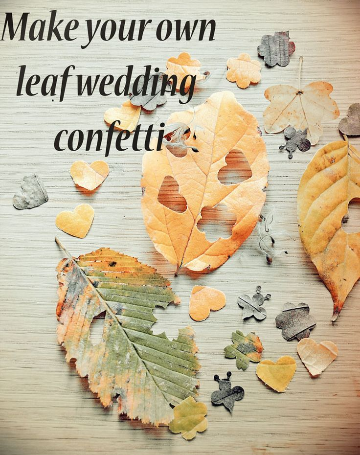 Create your own biodegradable leaf confetti for your rustic wedding- http://www.wildflower-favours.co.uk/make-your-own-leaf-wedding-confetti/