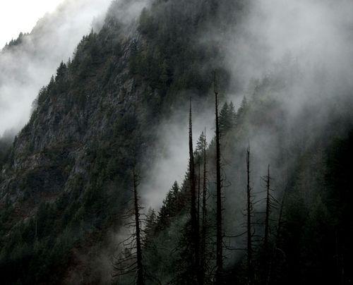 saivon kimallus #fog #nature #mountain