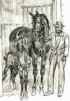paul brown artist 1956 buckle horse