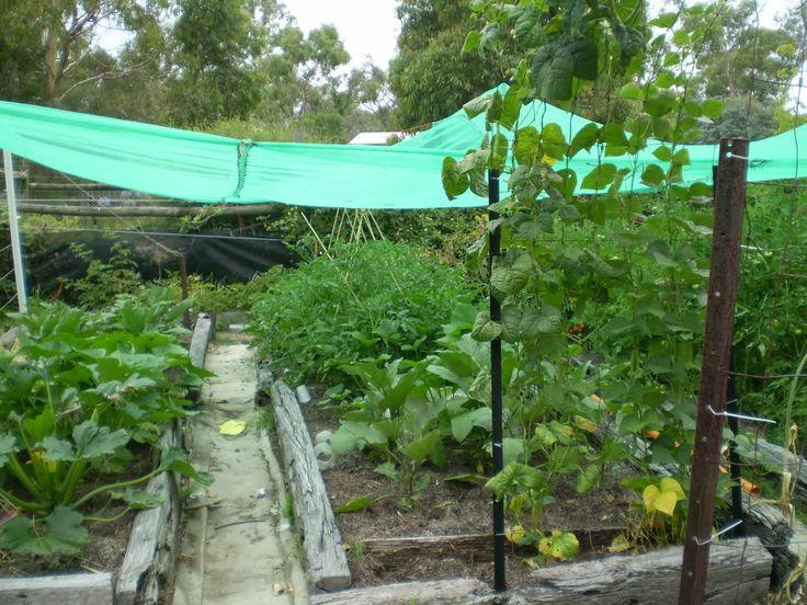 7 Best No Plastic Compost Bin Images On Pinterest Garden Compost Vegetable Garden And