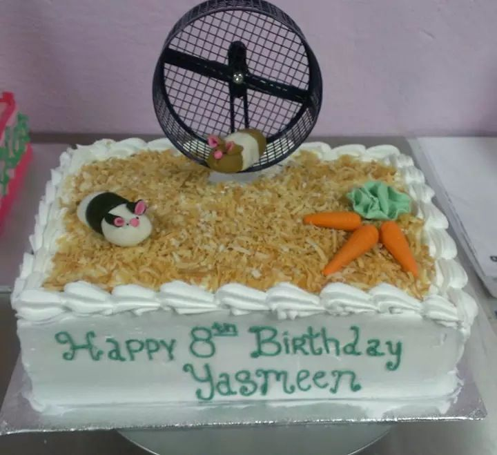 Best Hamster Birthday Party Images On Pinterest Hamsters - Hamster birthday cake