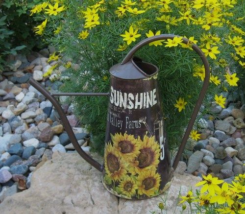 Unusual Watering Cans: Best 71 Unusual Watering Cans And Pitchers Images On