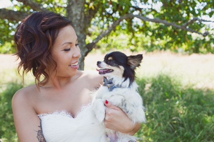 Beautiful Bride and her sweet puppy. Proof that you dont have to grow out your hair for great Bridal hair. Hair by Robin Achterberg. https://www.facebook.com/ParlorHairBoutiqueVictoria www.parlorhairboutique.com  #lorealprofessionnel #pureology #bridal #hair #ombre #bob