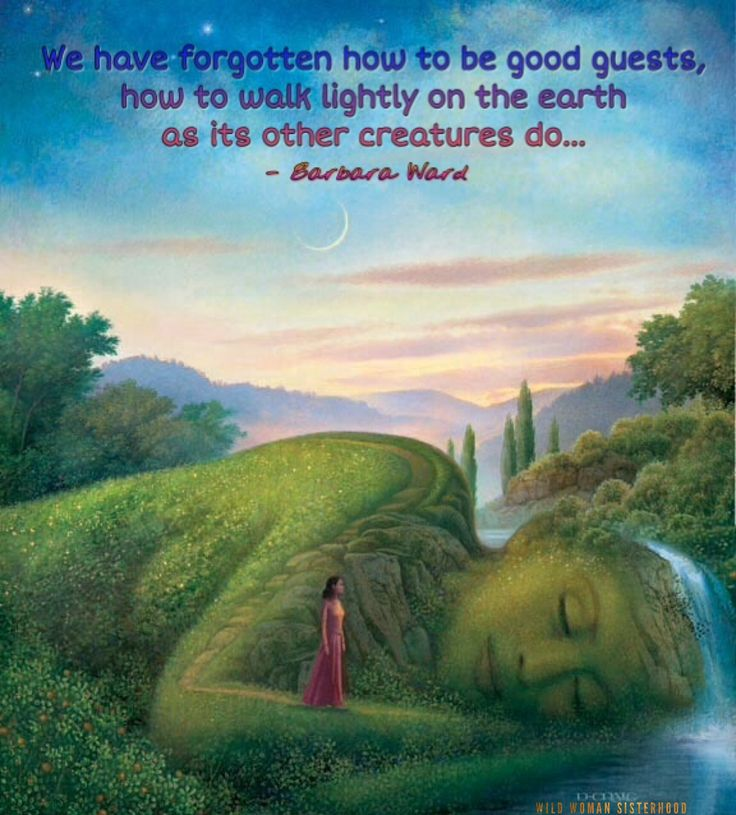 We have forgotten how to be good guests, how to walk lightly on the earth as its other creatures do. - Barbara Ward WILD WOMAN SISTERHOODॐ #WildWomanSisterhood #nature #earthenspirit #womenoftheearth #wildwomanmedicine