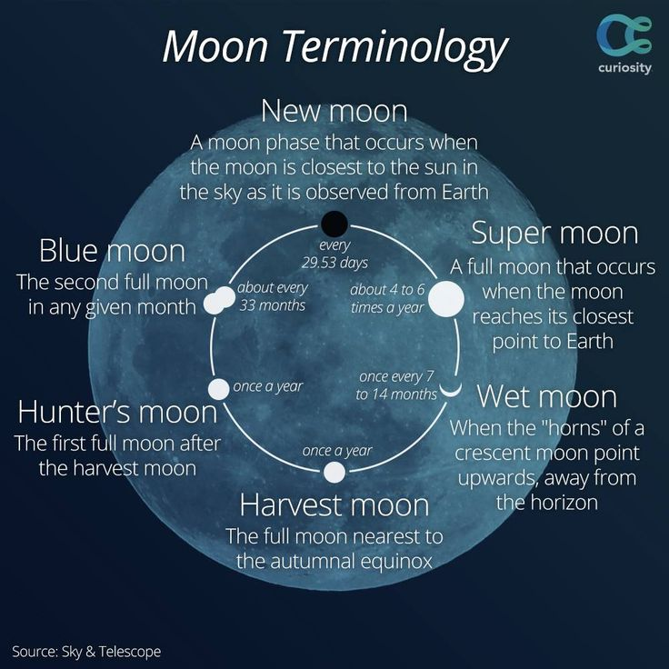 Not only was the September 8, 2014 moon a harvest #moon, it was also the last super moon of the year. Learn more about harvest moons with this short video from NASA: https://curiosity.com/video/sciencecasts-the-harvest-moon-science-nasa/?utm_source=pinterest&utm_medium=social&utm_campaign=090814pin