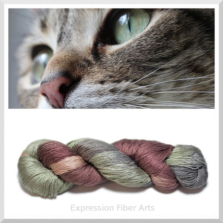 THE CAT'S MEOW - pure spun silk yarn! OH MY! (http://www.expressionfiberarts.com/products/the-cats-meow-silk-yarn.html)
