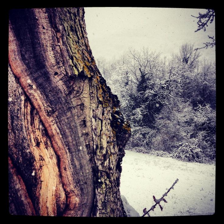 Snow in le Marche.  Sibillini Mountains