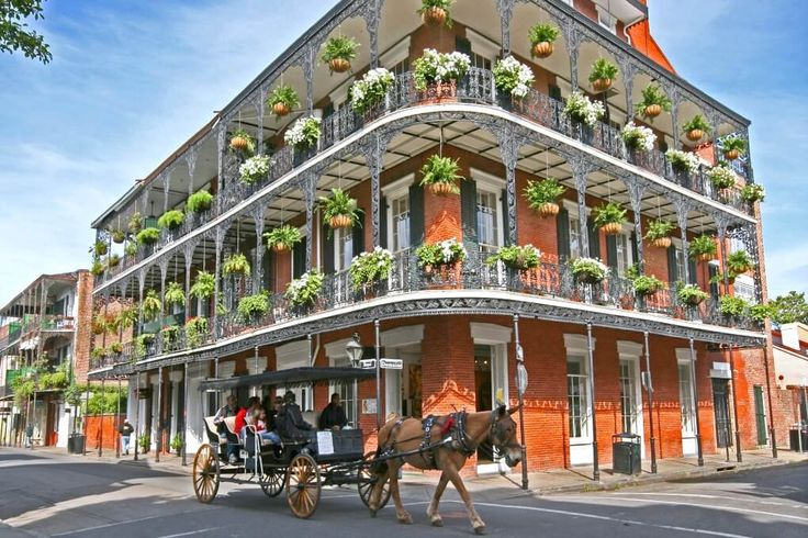 New Orleans may have a reputation for partying and nightlife, but it has a family-friendly side, too. If you've ever considered a family vacation to New Orleans, don't hesitate – NOLA has culture, food and attractions unlike anywhere in the United States, making it an unforgettable destination for families. Read this Big Easy family vacation guide from Alamo Chief Travel Guide Stefanie Fauquet of Mommy Musings.