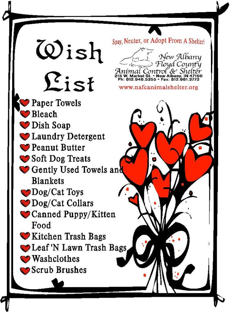 Please donate these simple items to your local shelter.  Birthday idea: have everyone bring animal products donations as gifts.