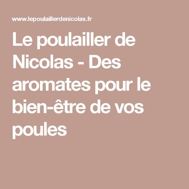 Le poulailler de Nicolas - Des aromates pour le bien-être de vos poules