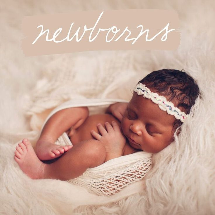 Charlotte newborn photographer charlotte family photographer