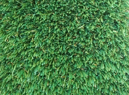 NEW!!! SPIRIT SERIES!!!  Fescue 74!!! All American Made Product!!!
