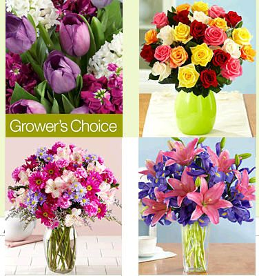 discount for proflowers