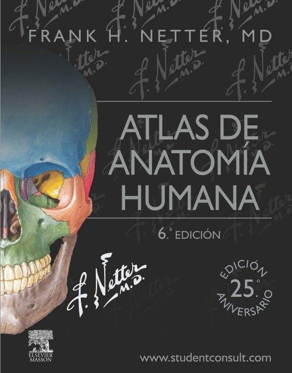 atlas de anatomía humana netter 7ma edición pdf para descargar