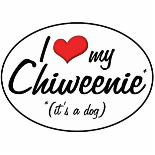 chiweenie- finally!  Someone has a sign for MY dog :). Chopper the Wonder Chiweenie!