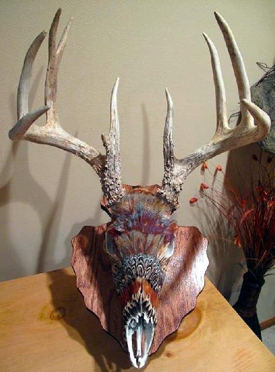 Deer skull, awesome color design.