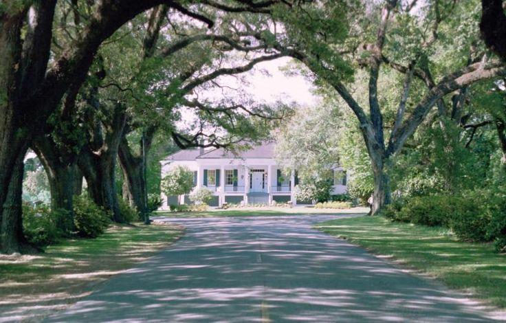 The Avenue of the Oaks in Mobile Alabama.