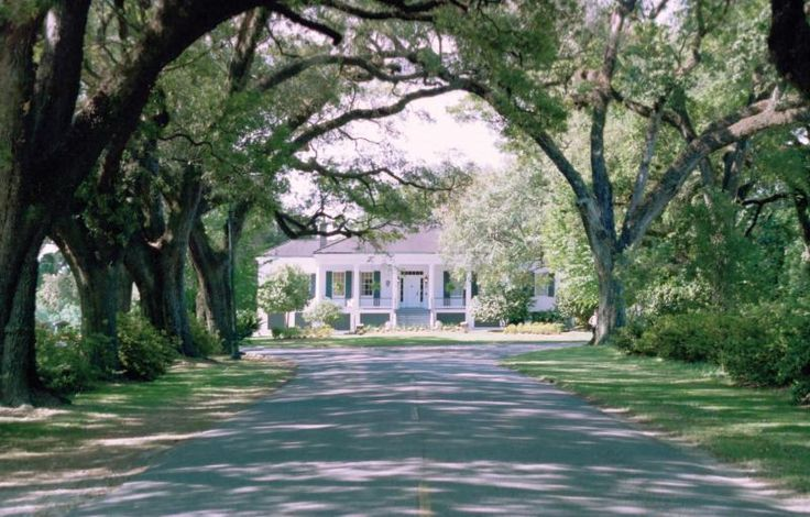The Avenue of the Oaks in Mobile Alabama.