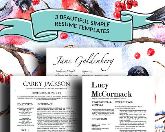 3 Stylish Resume Templates with Matching Cover Letters for Microsoft Word