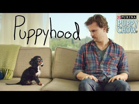 PUPPYHOOD - This is probably going to be the cutest thing you're going to see today ...soooo adorable!
