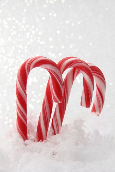 Christmas Candy Canes!
