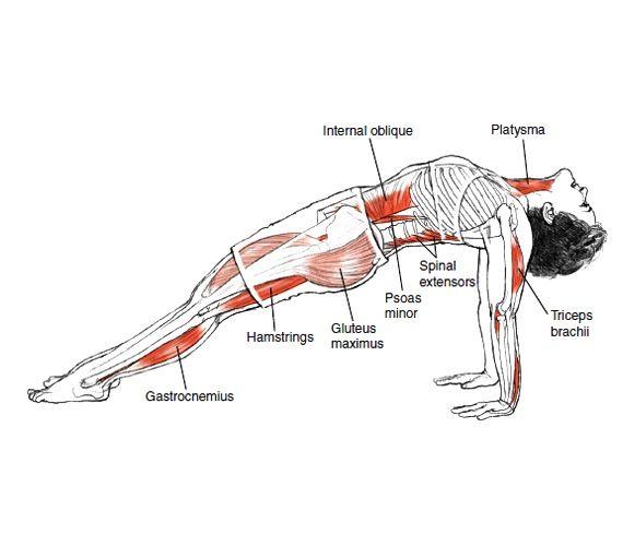 Yoga pose: asana