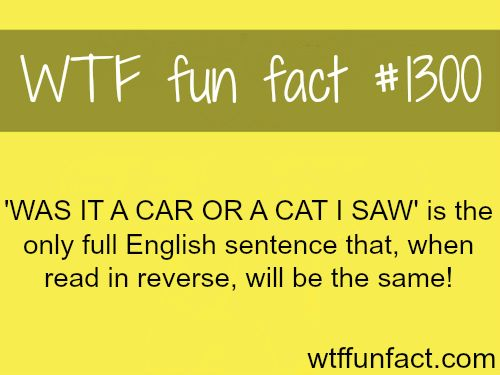 MORE OF WTF FACTS are coming HERE  Words, Celebs, movies and fun facts