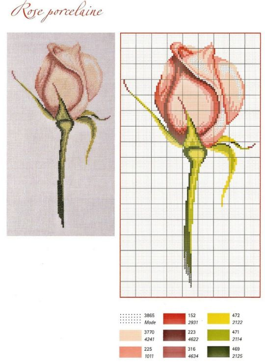 Gallery.ru / Фото #4 - Les Roses - Orlanda