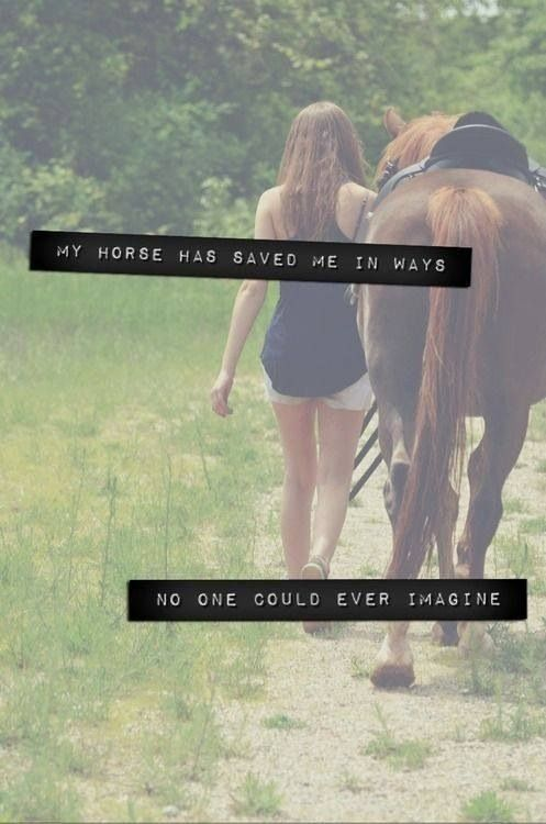 My horse has saved me in ways no one could ever imagine.