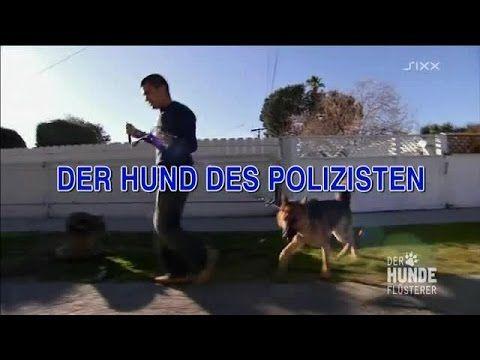 Der Hundeflüsterer - Der Hund des Polizisten - YouTube
