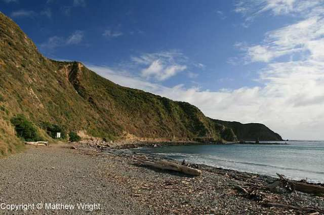 Makara Beach, winter 2014. You wouldn't think it was winter, really.