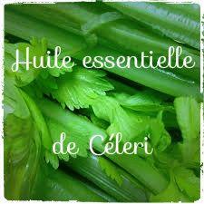 L'huile essentielle de céleri vous accompagne dans une cure détox. Elle est aussi utilisable diluée dans une huile végétale pour estomper les tâches sur la peau