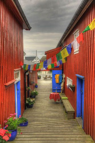 Red Walls and Tissues    Color full street in the little harbor of Henningsvær, on Lofoten Islands. That street and the houses on each side are build on stilts over the water.