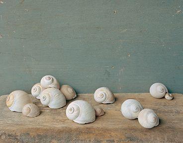 david halliday artist - Google Search