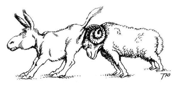 Гороскоп Знак зодиака рыбы