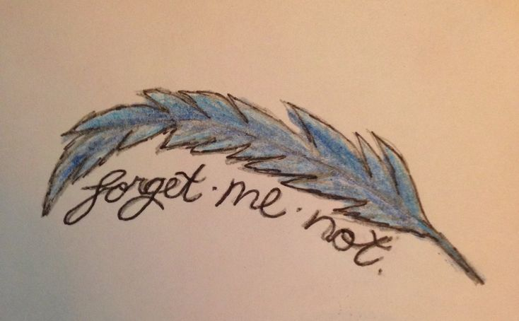 Blue Jay Feather Clip Art | Blue Jay Feathers