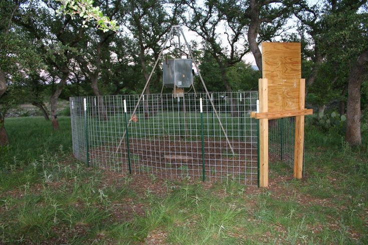 328 Best Images About Snares Amp Traps On Pinterest