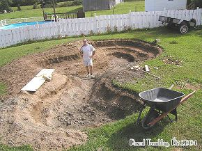 how to build a water garden or backyard pond, gardening, landscape, outdoor living, ponds water features, Me i dug this just with a round stovel Building Instructions