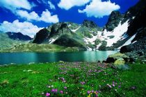 Artvin s a province in Turkey, on the Black Sea coast in the north-eastern corner of the country, on the border with Georgia.  http://www.turkeytraveladvisory.com/turkey_tours/details/turkey_travel_destinations/28/Artvin/
