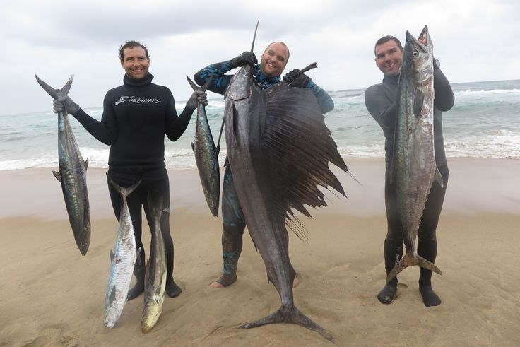 Fish speared Cape vidal October 2017