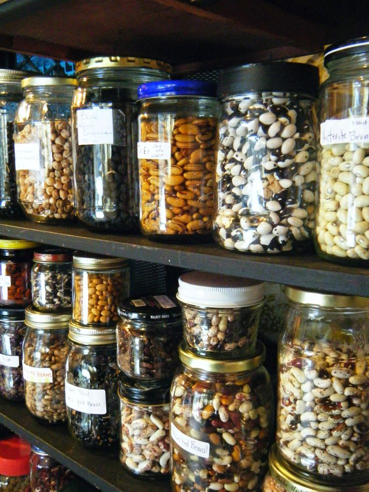 What You Need To know About Seed Saving