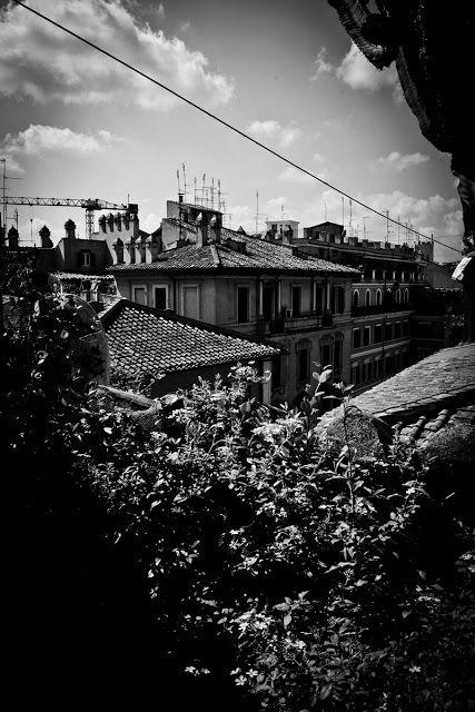 il volto della realtà: ROMA A VOLO D'UCCELLO