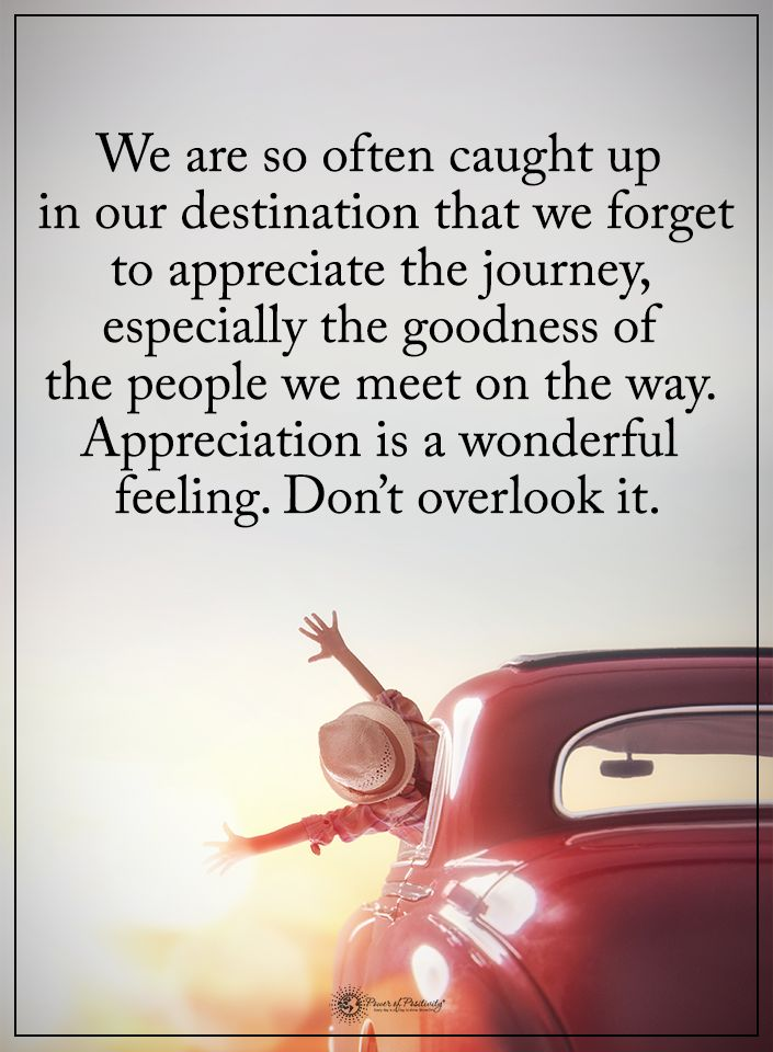 We are so often caught up in our destination that we forget to appreciate the journey, especially the goodness of the people we meet on the way. Appreciation is a wonderful feeling. Don't overlook it.